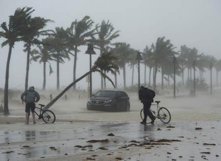 """飓风""""艾尔玛""""造成损失或高达1200亿美元"""