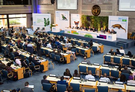 联合国环境大会闭幕 呼吁防治污染