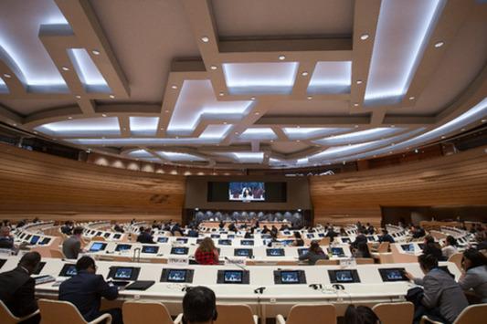 中国企业在联合国分享共享经济经验