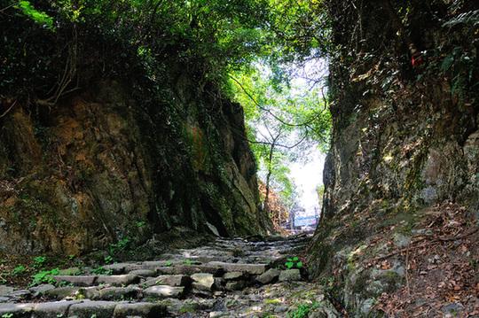 一个午后,记者来到位于珠海凤凰山的长南迳古道.