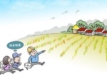 在外打工不如返乡就业 农民工回流力促中西部发展